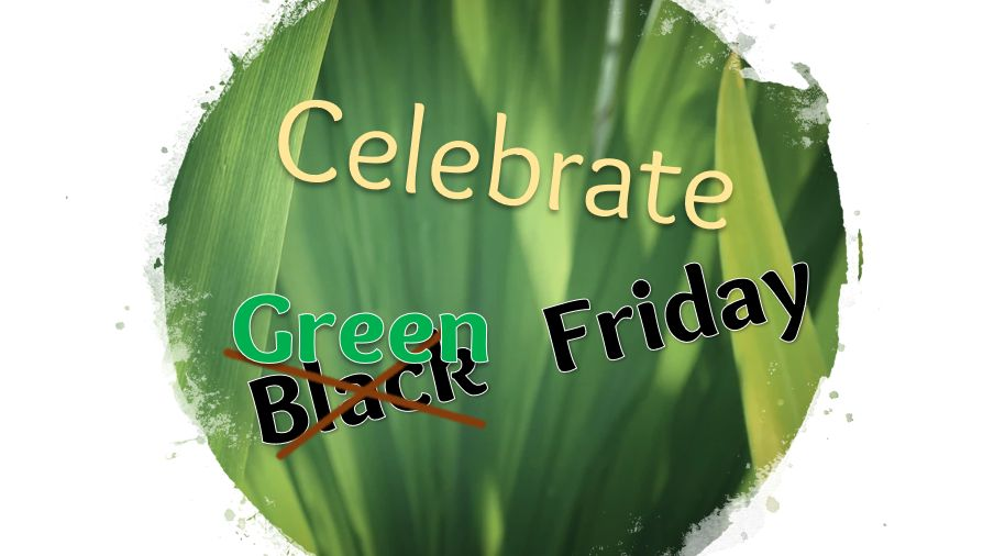 green-friday-feature